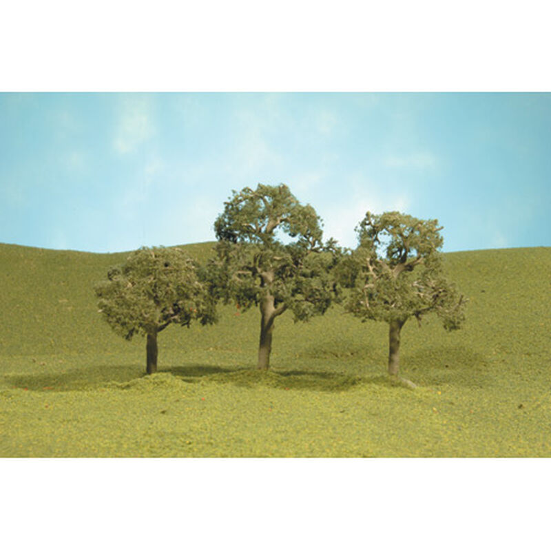 "Scenescapes Walnut Trees, 2.5-3.5"" (3)"