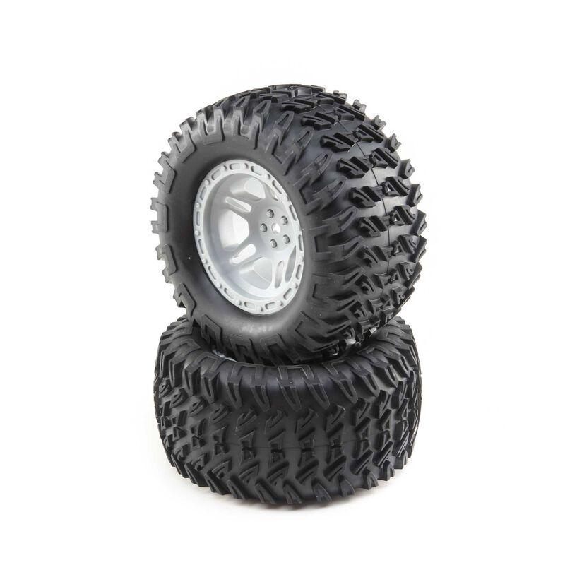 Tires Mounted, Grey (2): TENACITY MT