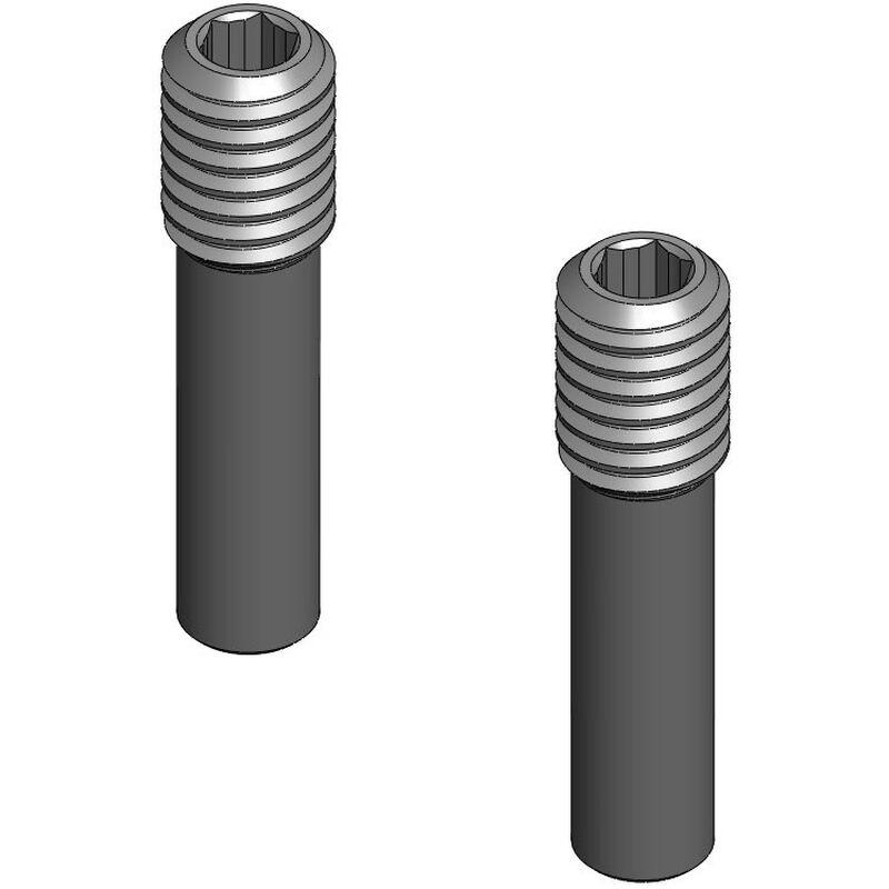 SHSS, M3 x .099 Pin Screw (2)