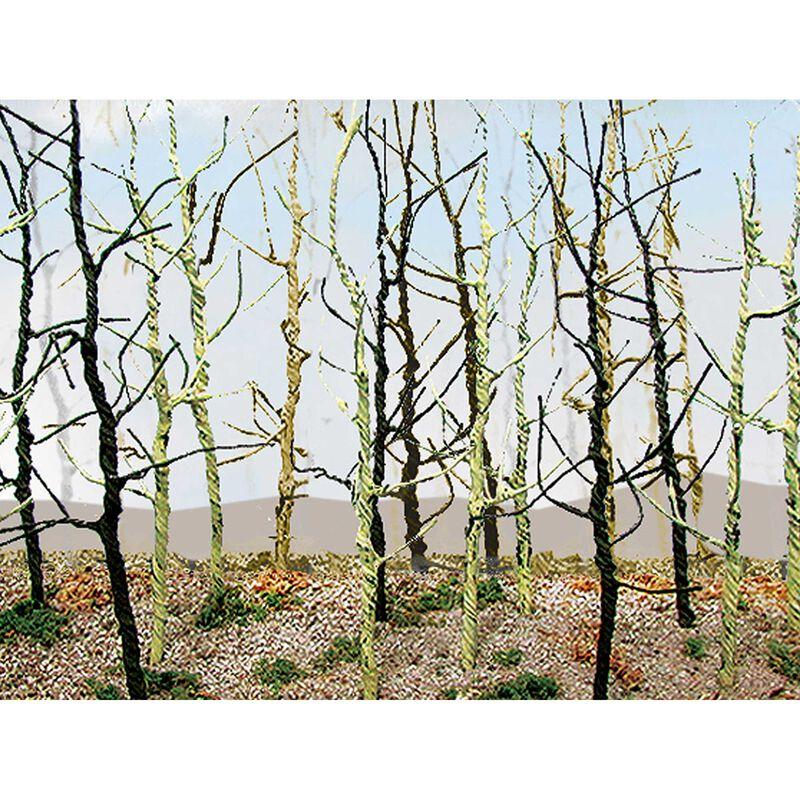 Wood's Edge Trees, Bare (14)