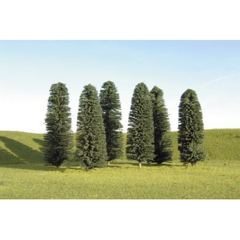 "Scenescapes  Cedar Trees, 5-6"" (24)"