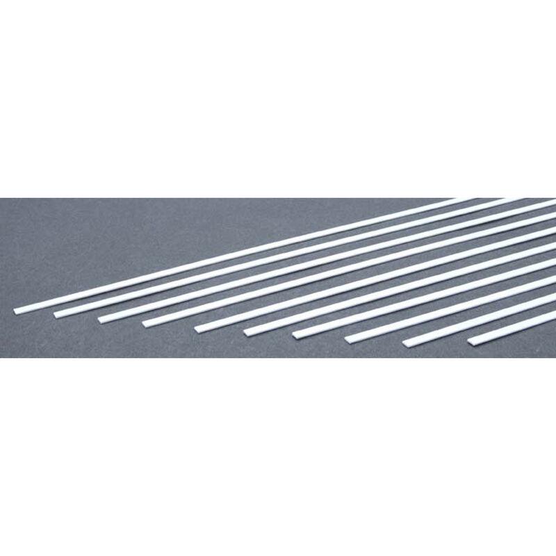 Strip .060 x .100 (10)