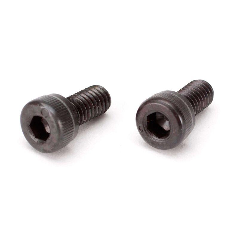 M4 x 8 Screw (2)