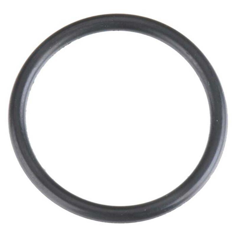O-Ring: 21TM