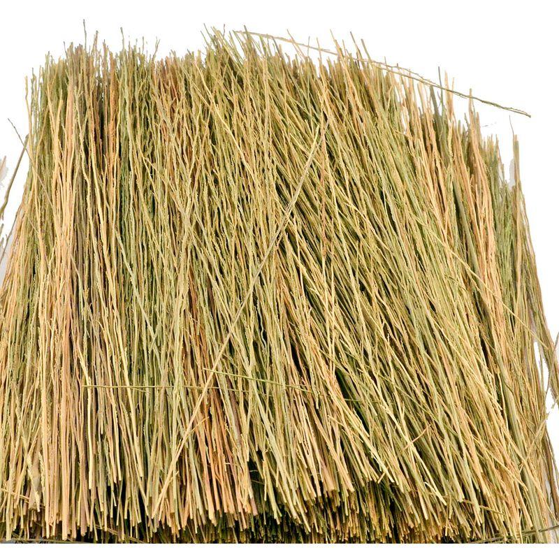 Field Grass Natural Brown